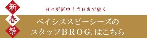 brog_link_toBS